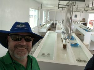 Tilapia hatchery in Campeche, Mexico