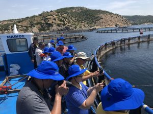 SEA Stakeholder Group in Salamina, Greece