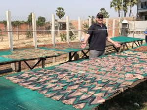 Drying fish in Cambodia